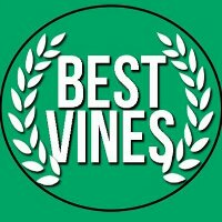 THE BEST VINES