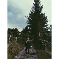 ari_vanilla