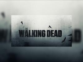 XxThe_Walking_DeadxX