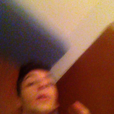 vine by Abelardo