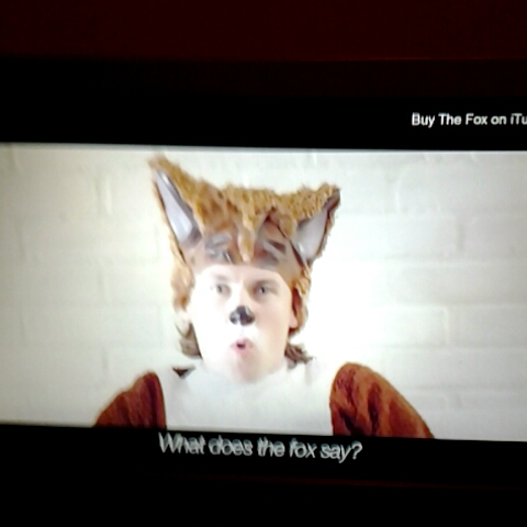 What does the fox say vine gif