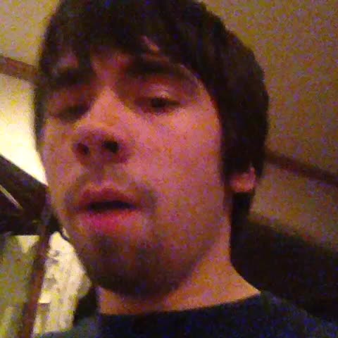 vine by Jack Jr