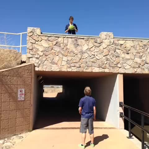 vine by Connor Childs
