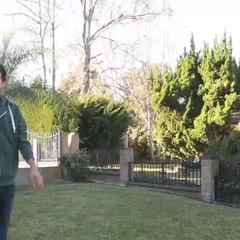 vine by Zach King