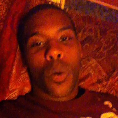vine by Eric Midnight