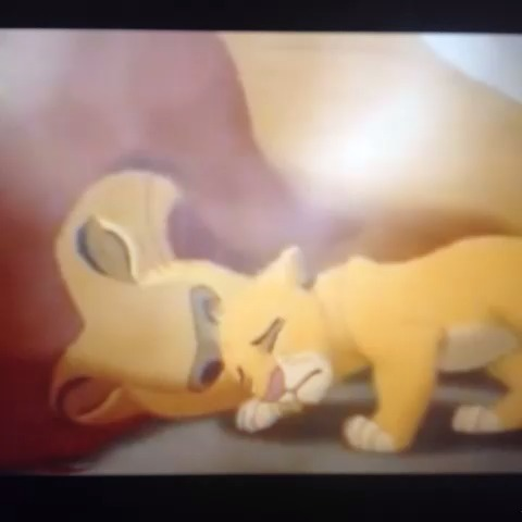 Only exception for a thug to cry #TheyTookMyNiggaMufasa vine