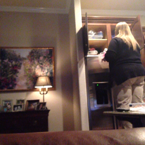 vine by Caitlyn Cook