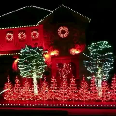 #YeaAlabama #CrimsonTide #RTR #RollTide #RollTideRoll #RDT #RMFT #Alabama #UA #UniversityofAlabama #ChristmasLights #MerryChristmas #Bama