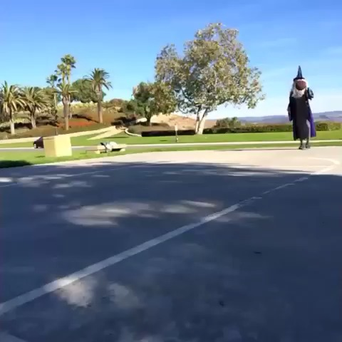 vine by Kc James
