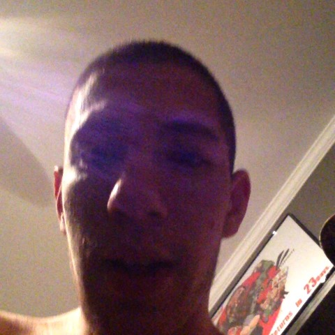 vine by Nick Santonastasso