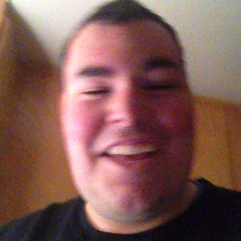 vine by Austin Dorman