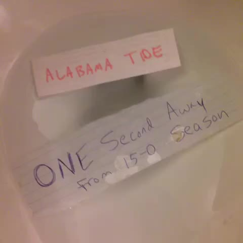 My last @VINE ever - ode to the Bama Roll Tide fans #RollTide #RollPinkFloyd Alabama Football ❤️🏈