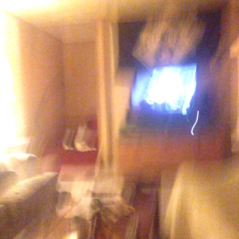 vine by Brandon Bonuito