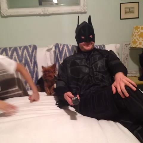 I'm Batman w/Brittany Furlan vine