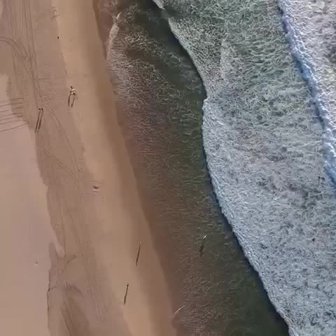Bondi beach vibes 🇦🇺💦🌊🚁 #drizzy #drone #exploremore #bondibeach