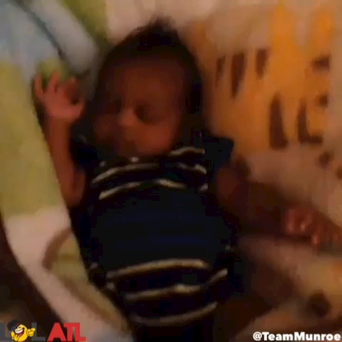 vine from TeamMunroe