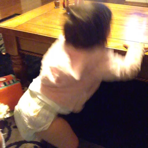 vine by Taylor Janelle Swift