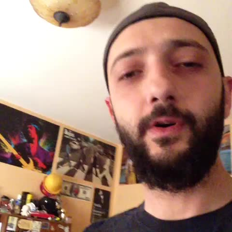 vine by Ant!c