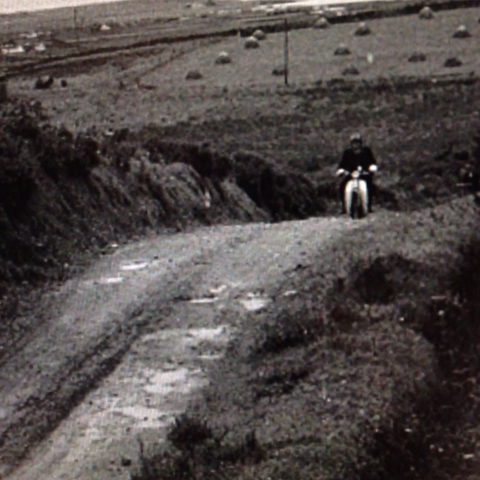 vine by RTE Archives