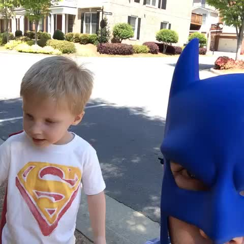 vine by BatDad