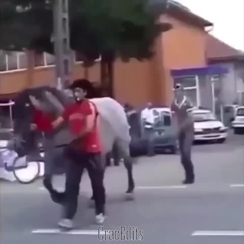 You Fondle A Horses🐴Ass, You Get The Hooves💥 A.R IG: no chill, Adam #BuckThatTrick#funnyshit