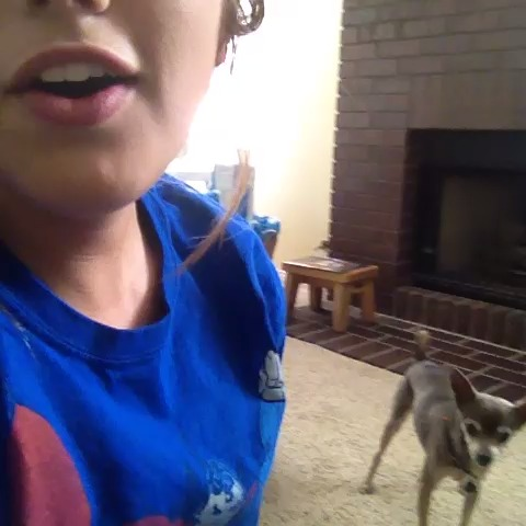 vine by Savannah Gunner