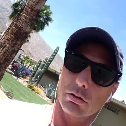 vine by Palm Springs Forever