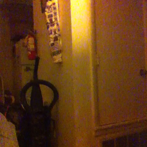 vine by Chandler Ray Kirkendohl