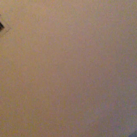 vine by lizzza