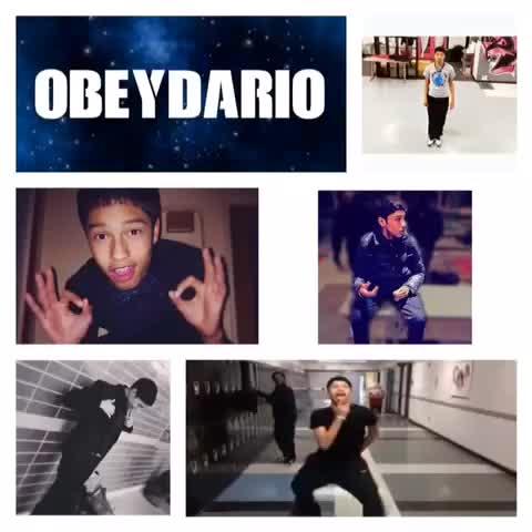ObeyDario          Vine clip Obeydario Tumblr