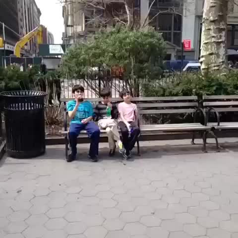 vine by HUMANS
