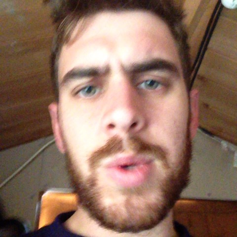 vine by StuggyBear
