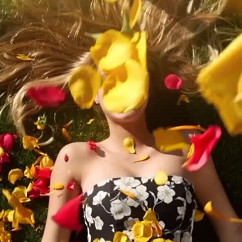 #HappyInternationalWomensDay ! Shoutout to Flowers💐#Ryangosling 👱🏼Tampons🔴& Food 🌭😘 Arantza, Lele Pons, Alissa Violet, 🎥Max Goodrich Video Thumnbail