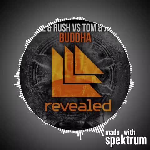 Holl & Rush vs. Tom & Jane - Buddha #realedm #edm #audios #music #ultra #umf #festival