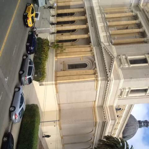 vine by USFCA