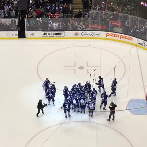 Toronto Maple Leafss post on Vine - The boys salute the crowd after tonights 4-1 victory over the Red Wings #tmltalk - Toronto Maple Leafss post on Vine
