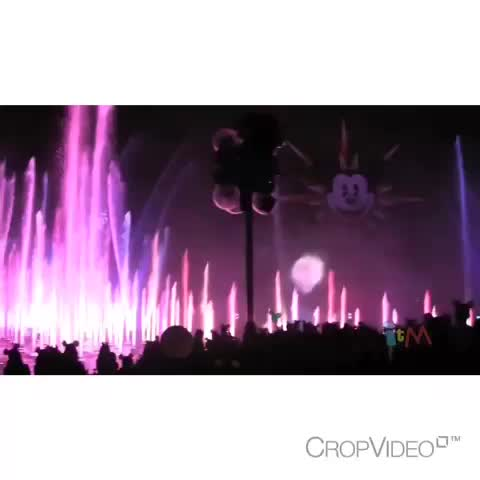 Frozen Moments™s post on Vine - ❄️Wish I couldve been there for this! Its so beautiful!❄️ #Elsa #Frozen #Disney - Frozen Moments™s post on Vine