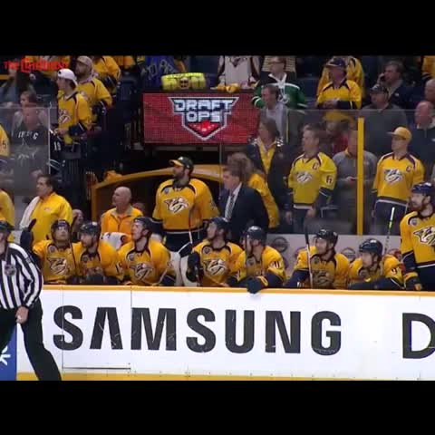 Vine by The Cauldron - Predators Bench Synchronized Falling