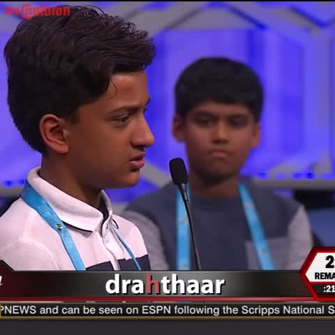 Vine by The Cauldron - Cold Game At The Spelling Bee