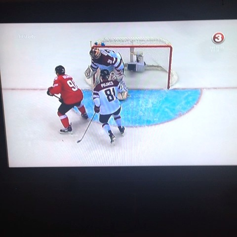 MartinsGribustss post on Vine - Edgars Masalskis amazing save #Latvia #Sochi12014 #hockey - MartinsGribustss post on Vine