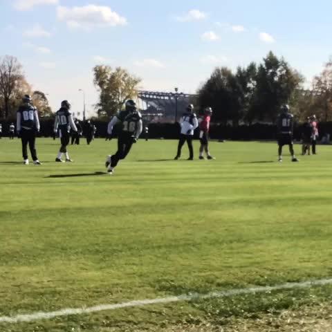 Philadelphia Eagless post on Vine - One-handed. Tiptoes. #MacAttack. #FlyEaglesFly - Philadelphia Eagless post on Vine