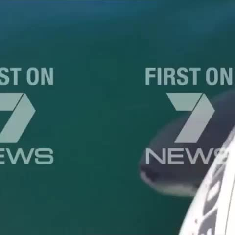 Vine by 7 News Queensland - 7 News at 6pm: Exclusive video - close call for a group of fishermen 7Live.com.au #7News