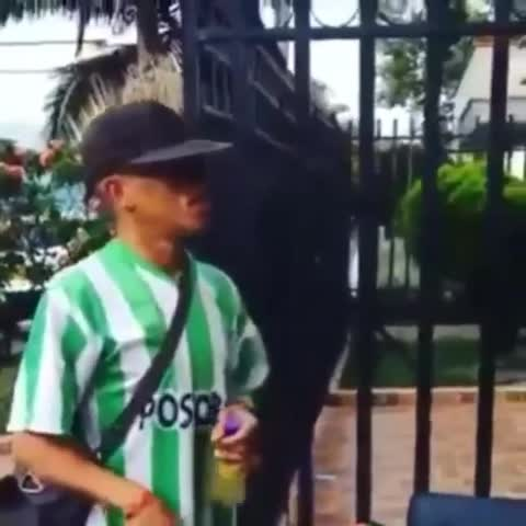 - Vine by Dahyana Y
