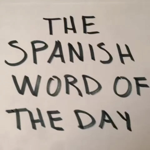 The Spanish Word of The Day #remake #tbt - omar gHonims post on Vine