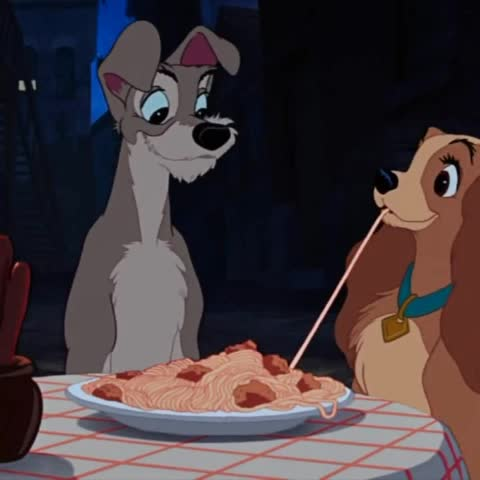 Vine by DoubleD - Lady and the Tramp in real life 🍝🍝😂
