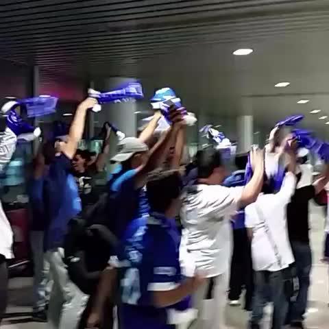 قروب زعماء آسيا ™s post on Vine - فيديو : لحظة وصول جماهير #الهلال إلى سيدني 😍💙 - قروب زعماء آسيا ™s post on Vine