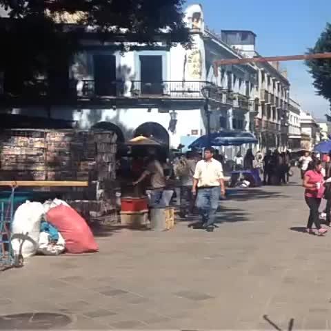 Vine by SofyValdivia - Un grupo de comerciantes ambulantes, se instaló nuevamente de manera irregular en el zócalo de #Oaxaca.
