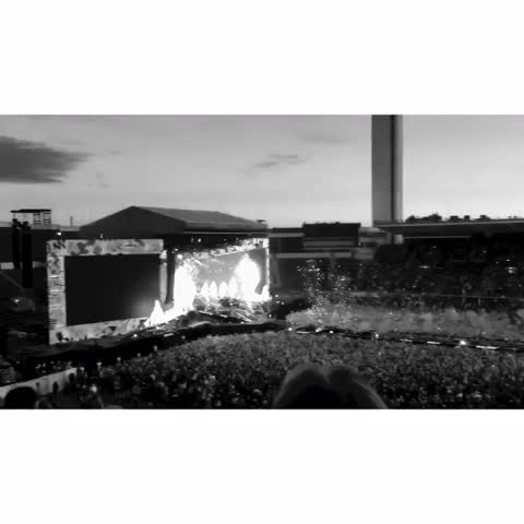 Vine by adidās styles - OTRA is now over, and I miss it so much already. #OTRAHelsinki