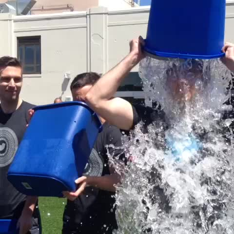 Twitter Designs post on Vine - The Twitter @Design did the #ALSIceBucketChallenge today. We challenge @facebookdesign @RGA and @ustwogames. You have 24hrs to accept! - Twitter Designs post on Vine