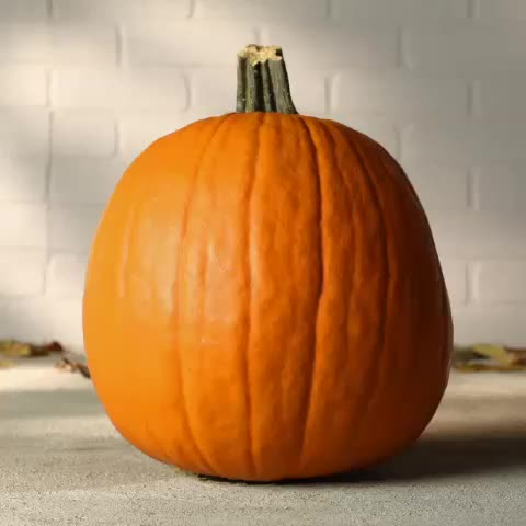 Use a cookie cutter and a hammer for perfect pumpkin carving. #lowesfixinsix #halloween #pumpkin #diy #jackolantern - Lowess post on Vine